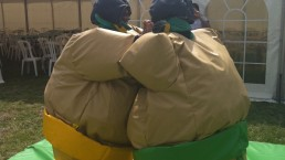 knockout sumo wrestling
