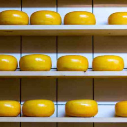 Who Moved My Cheese Cheese on Shelf