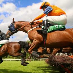 Virtual Horse Racing Jumping Horses